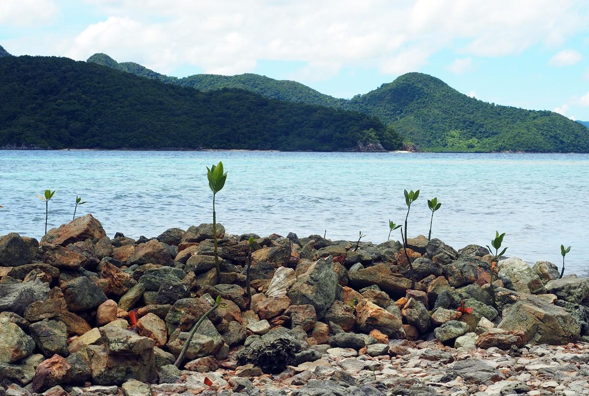 Cheron island view
