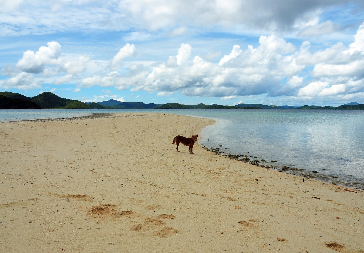 Private Cheron island located in Palawan Philippines