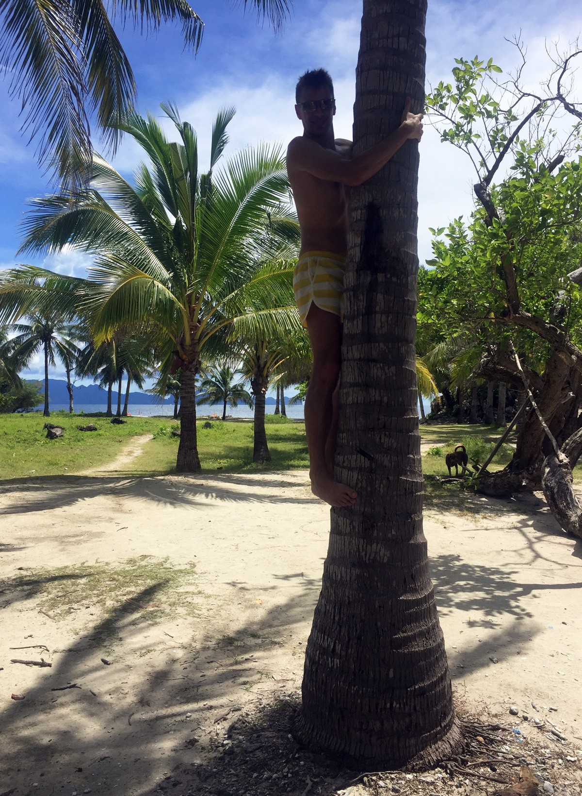 Andrei on Palm tree in Malcapuya island - Travelblogstories