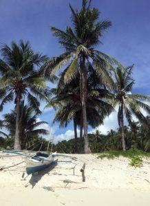 malcapuya-island-image