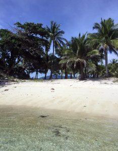 malcapuya-island-palawan-view