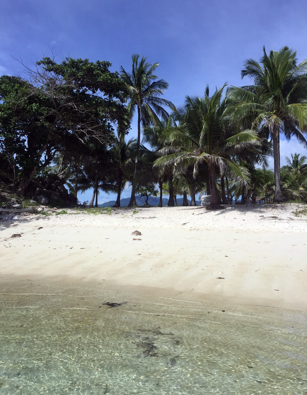 Malcapuya island with palms in Palawan, Philippines