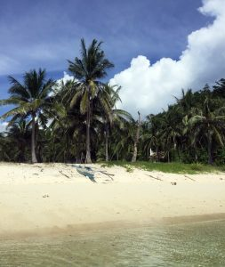 malcapuya-island-shot