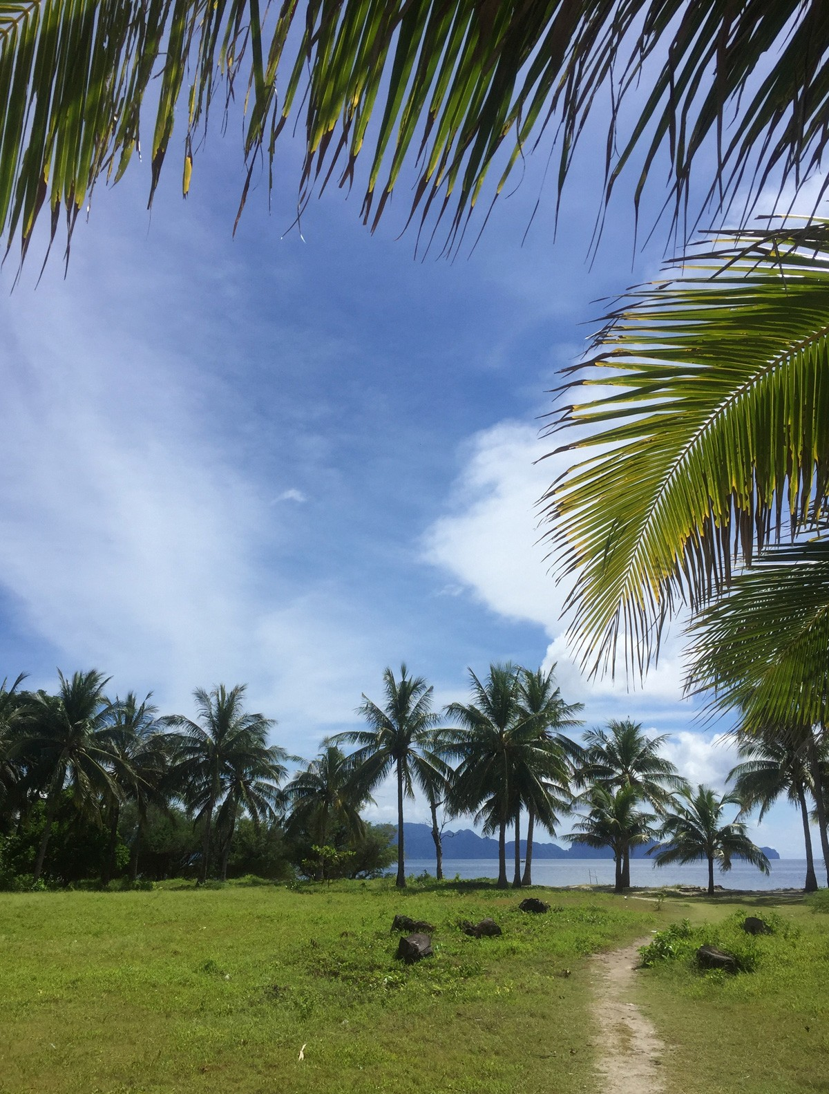 Malcapuya island blog 2017-2018