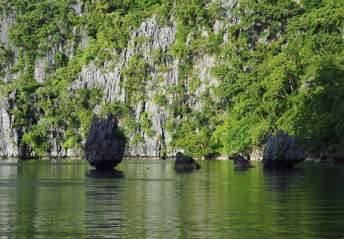 Beauty Kayangan Lake Rocks, Coron, Palawan