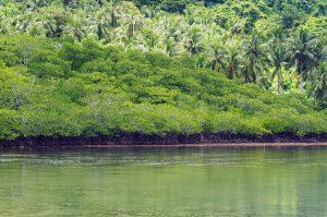 green_snake_island_palawan