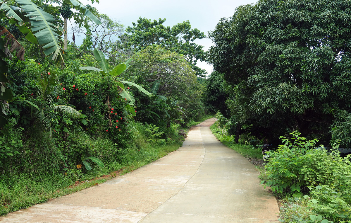 road to nakpan beach el nido