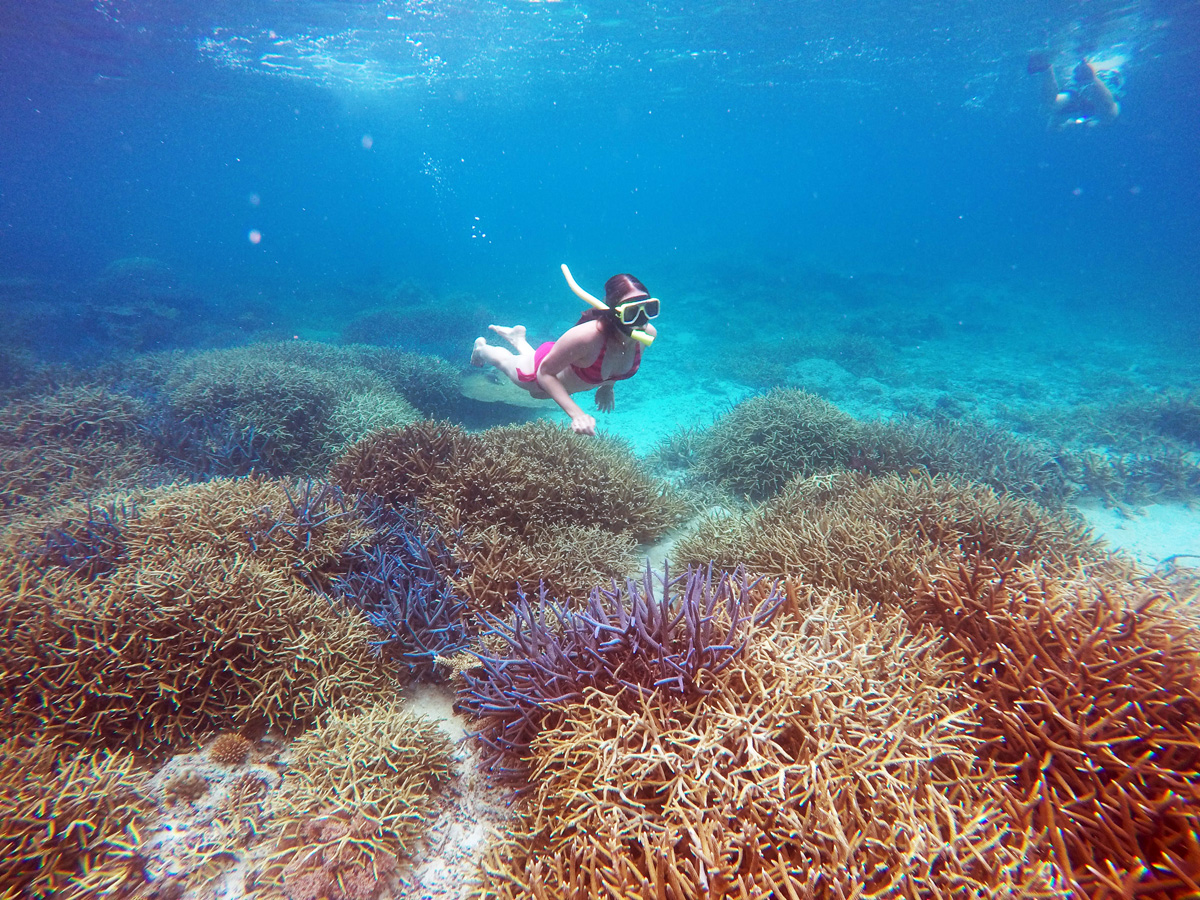 snorkeling_popocan_elnido_palawan