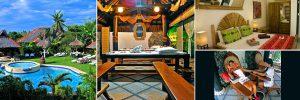 dolphin_house_resort_moalboal_cebu