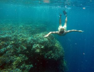 foto_snorkeling_pescador_moalboal_cebu