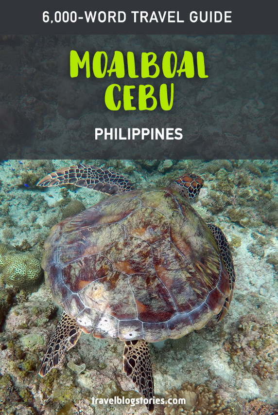 Moalboal, Cebu in the Philippines: how to get to diving paradise and unbelievable snorkeling