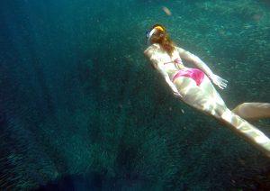 snorkeling_moalboal_sardine_run_pangasama