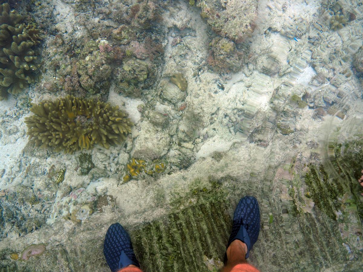 white_beach_moalboal_cebu_philippines