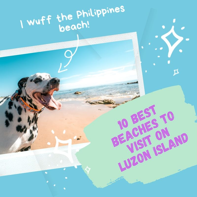 10_best_beaches_to_visit_on_luzon Island