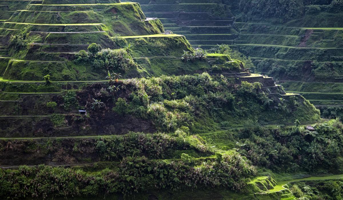 batad_rice_terraces_luson