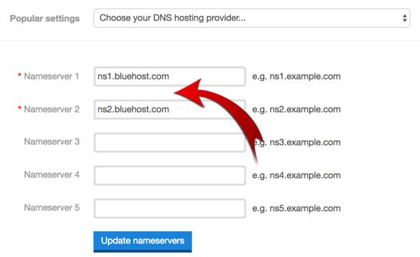 dns_hosting_provider_settings